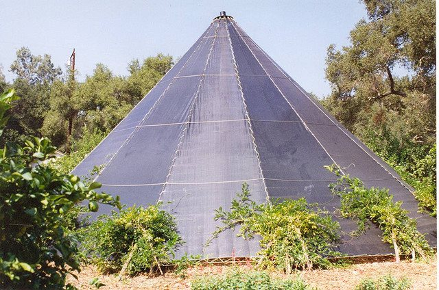 giant living tipi